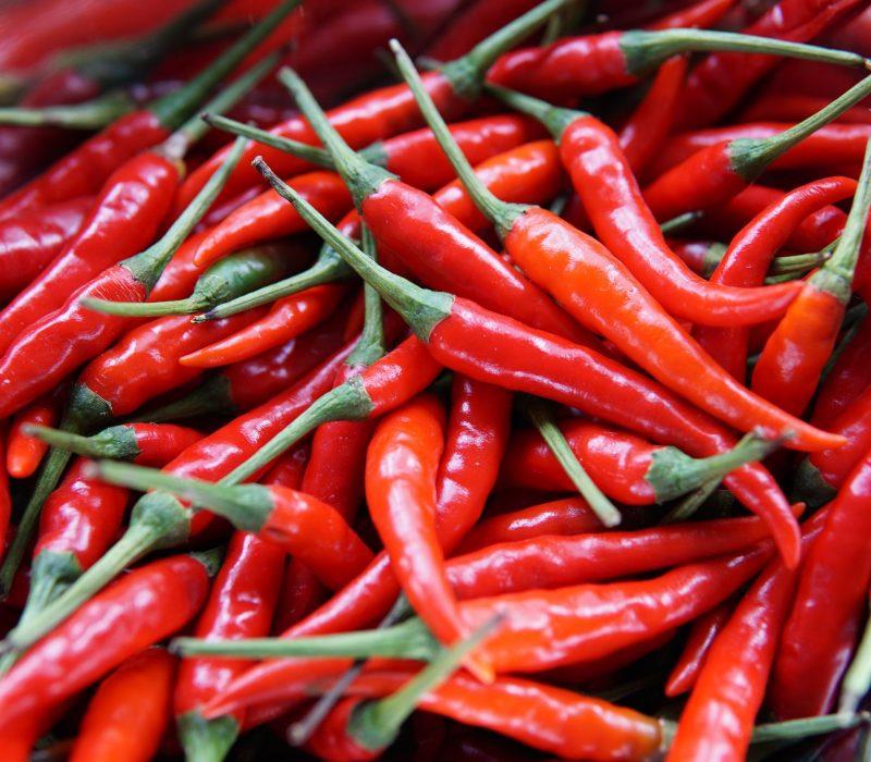 Peperonicino - chili